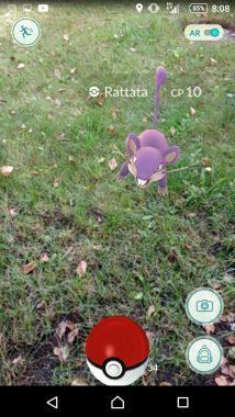 Как правильно ловить покемонов в Pokemon GO?