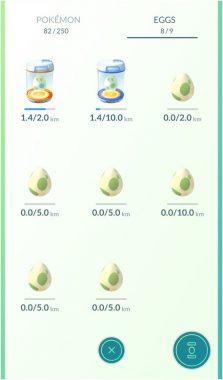 Правила Покемон ГО по вынашиванию яиц