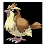 Пиджи из Pokemon GO
