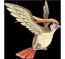 №018 Пиджит (Pidgeot)