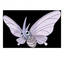 №049 Веномот (Venomoth)