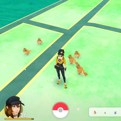 Где больше всего покемонов в Pokemon GO